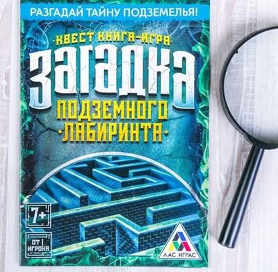 Загадка подземного лабиринта. Книга-игра поисковый квест - фото 19604